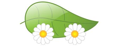 Bollo auto, Anfia propone esenzione triennale per i veicoli ecologici News